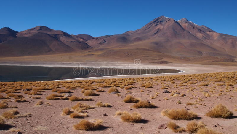 Atacama fotografía de archivo libre de regalías