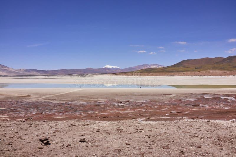 Atacama aride aménage le panorama en parc images libres de droits