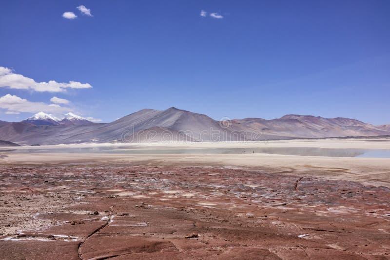 Atacama aride aménage le panorama en parc photos libres de droits
