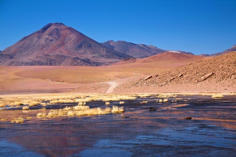 atacama cerro colorado nära den putanario vulkan royaltyfria foton