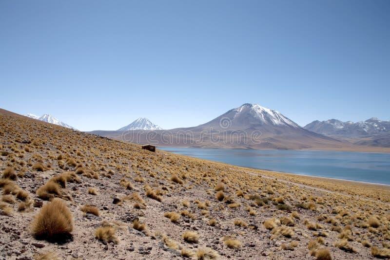 atacama Chile lagunas fotografia stock