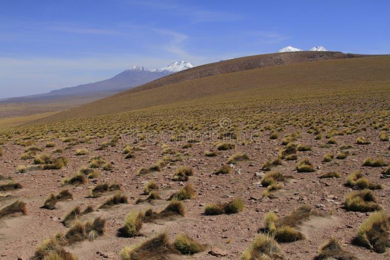 Download Atacama de Salar zdjęcie stock. Obraz złożonej z niebo - 57668964