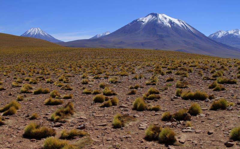 Download Atacama de Salar obraz stock. Obraz złożonej z niebo - 57668967