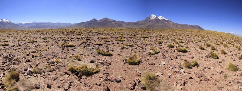 Download Atacama de Salar zdjęcie stock. Obraz złożonej z atacama - 57669020