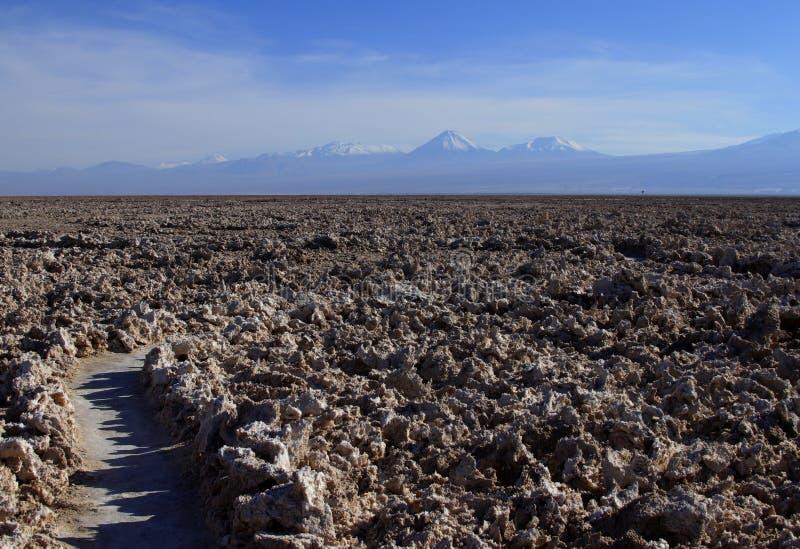 Download Atacama de Salar obraz stock. Obraz złożonej z sól, greenbacks - 57669169