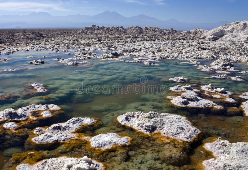 Atacama Desert - Chile royalty free stock images