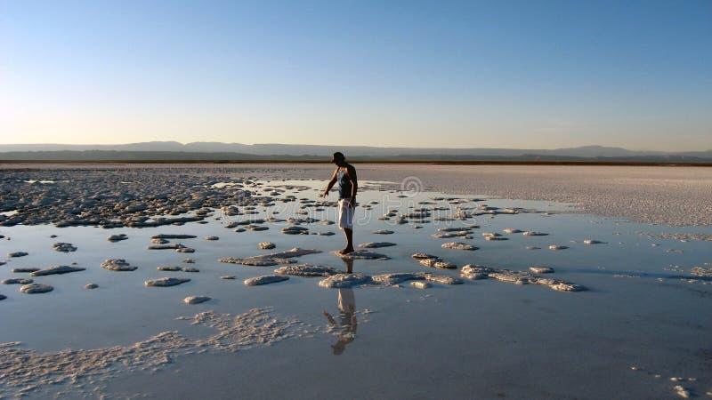 Atacama Desert, Chile stock photography