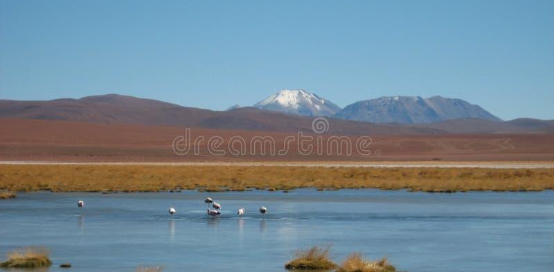 Download Atacama Desert, Chile stock image. Image of atacama, tourism - 4198111