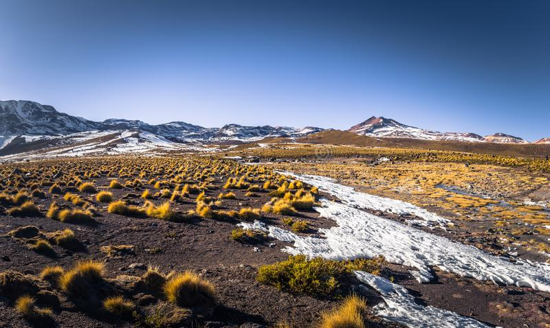 Atacama Desert, Chile - Landscape of the Atacama Desert, Chile stock images