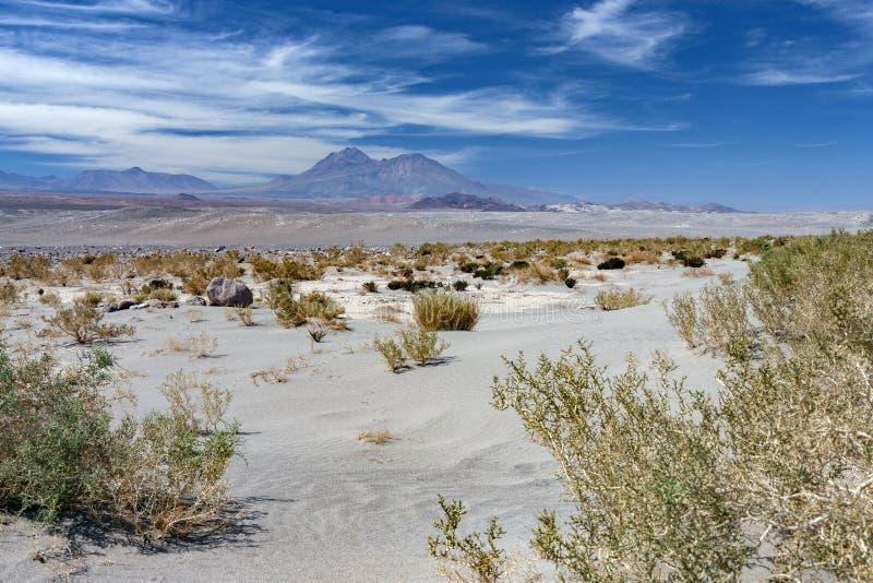 Atacama Desert - Chile - South America. The dry and arid Atacama Desert region of northern Chile, South America stock photo