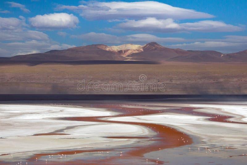 Atacama Wüste lizenzfreie stockfotos