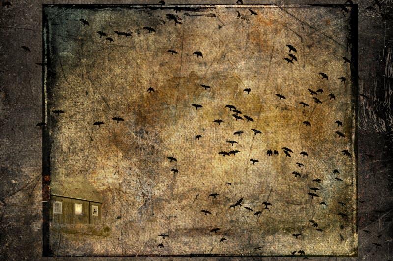 Ataque de los cuervos fotografía de archivo libre de regalías
