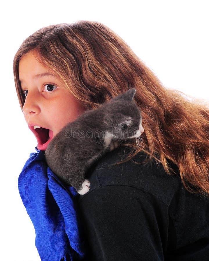 Ataque del gato fotografía de archivo libre de regalías