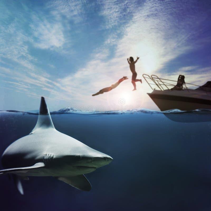 Ataque del tiburón fotos de archivo libres de regalías