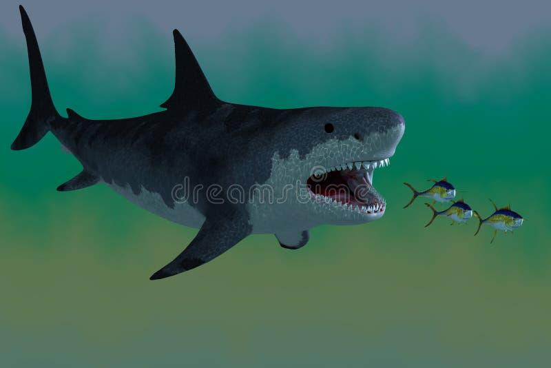 Ataque del tiburón de Megalodon fotografía de archivo