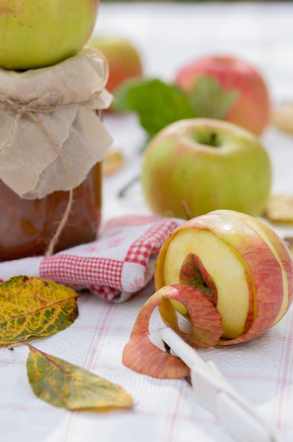 Atasco de la manzana del otoño imagenes de archivo