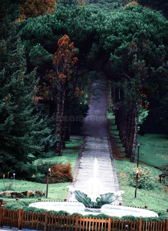 Ataturk Arboretumu Ιστανμπούλ, Τουρκία στοκ φωτογραφία με δικαίωμα ελεύθερης χρήσης