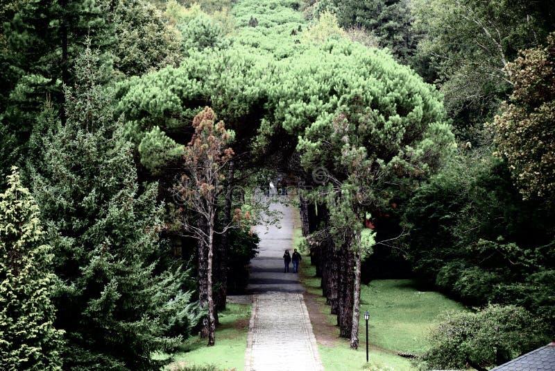 Ataturk Arboretumu Ιστανμπούλ, Τουρκία στοκ φωτογραφία