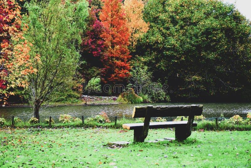 Ataturk Arboretumu Ιστανμπούλ, Τουρκία στοκ εικόνες με δικαίωμα ελεύθερης χρήσης
