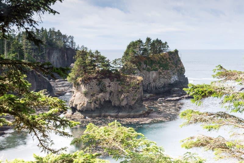 Atemberaubende Ansicht an Washington-Küste in der Kap-Schmeichelei herein stockfotografie