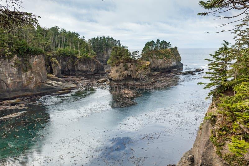 Atemberaubende Ansicht an Washington-Küste in der Kap-Schmeichelei herein lizenzfreies stockbild