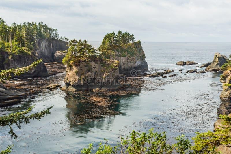 Atemberaubende Ansicht an Washington-Küste in der Kap-Schmeichelei herein lizenzfreie stockfotos