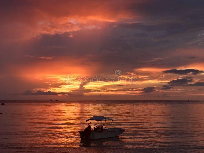 Atemberaubende Sonnenuntergangansicht stockfotos