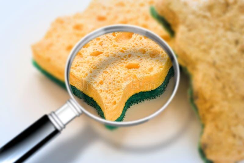 Atenção do pagamento às esponjas velhas para a limpeza do agregado familiar da cozinha: podem esconder as bactérias perigosas - i fotografia de stock