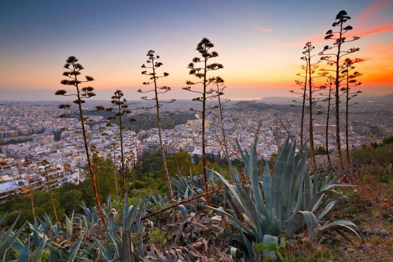 Atenas do monte de Lycabettus imagem de stock royalty free