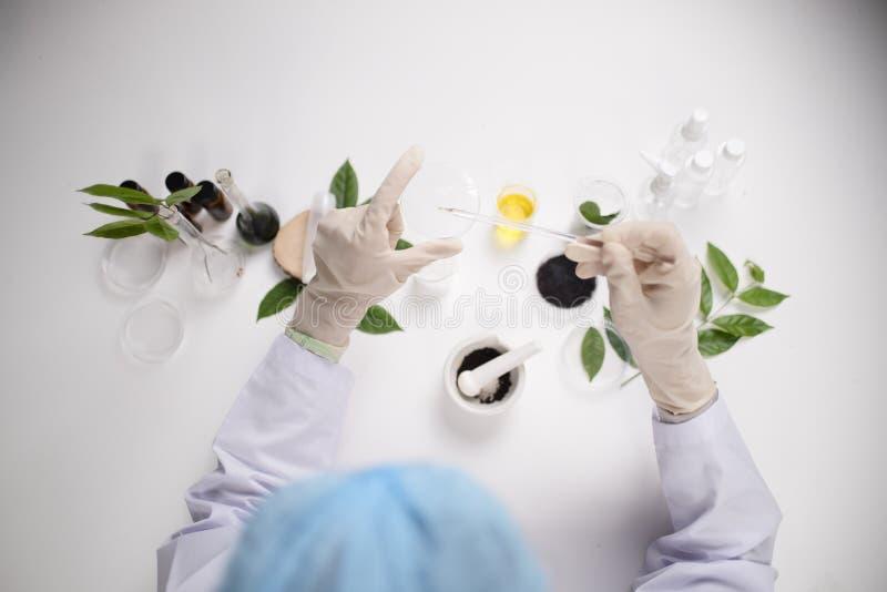 atención sanitaria de los investigadores que trabaja en laboratorio de ciencias de la vida Youn imagen de archivo