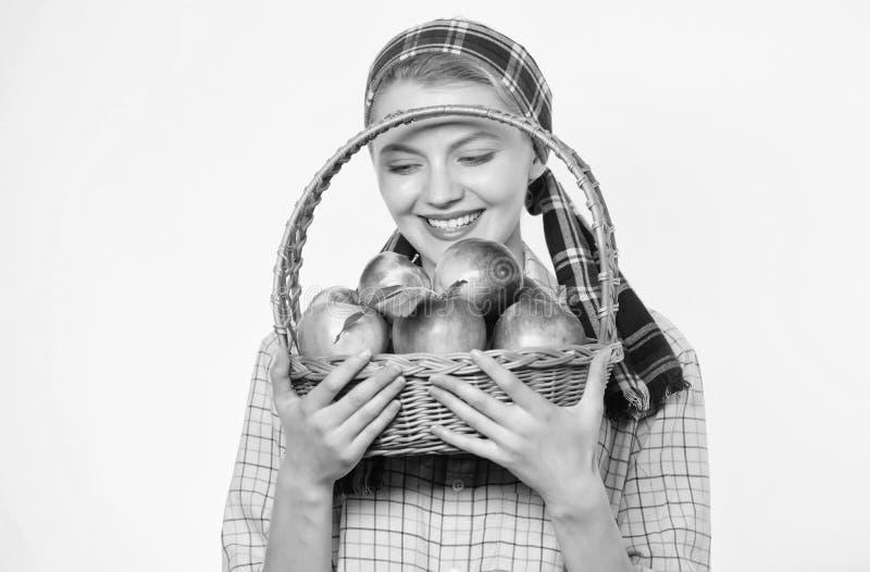 Atenci?n sanitaria y nutrici?n de la vitamina Manzana perfecta Colmado Dieta de la manzana del comienzo La mujer le gustan las fr fotografía de archivo libre de regalías