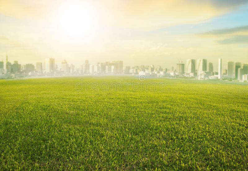 Aterre o campo de grama verde largo do scape e a construção moderna de s urbano fotografia de stock royalty free