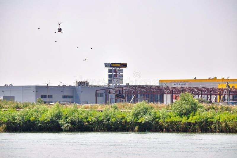 Aterrissagem dos pássaros e do helicóptero imagens de stock royalty free