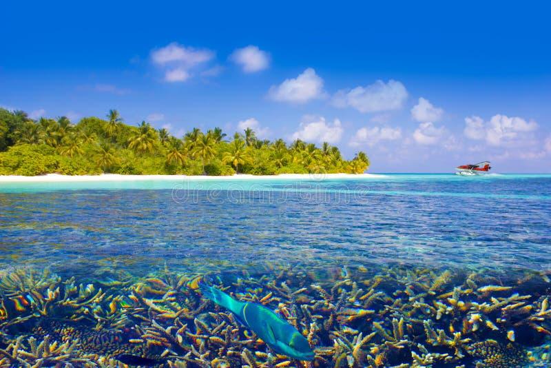 Aterrissagem em Maldivas, Eden do plano de mar na terra fotos de stock royalty free