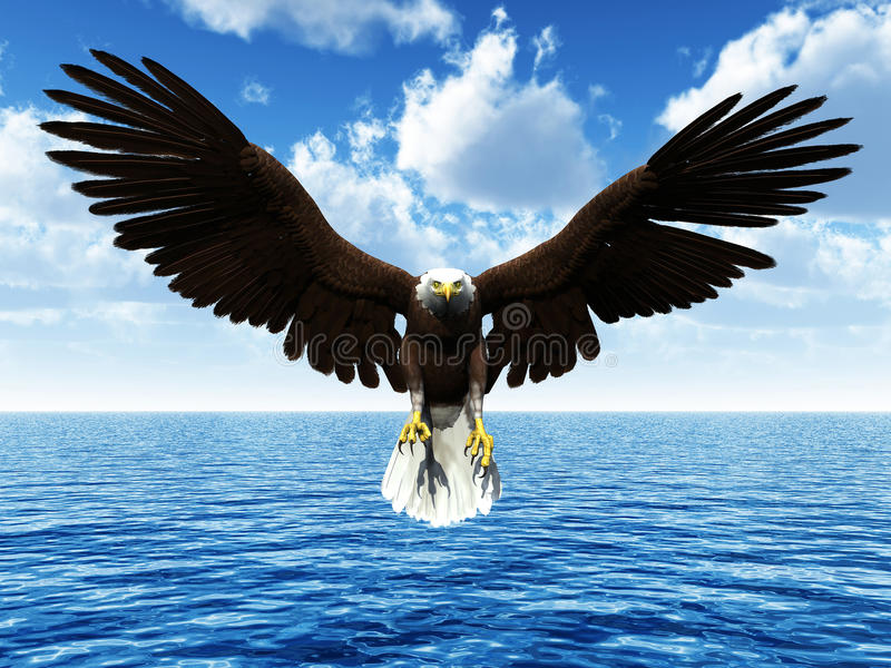 Aterrizaje del águila en el océano libre illustration