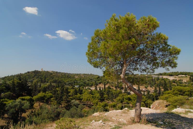 Athènes   photos libres de droits