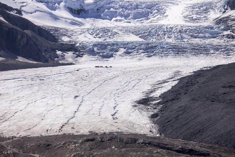 Athabasca冰川和哥伦比亚冰原 库存图片