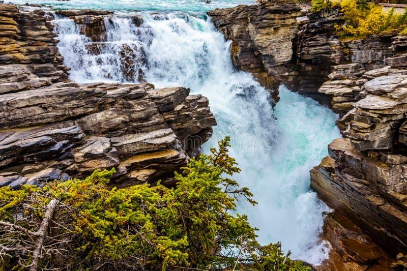 Download Athabasca在贾斯珀国家公园下跌 库存图片. 图片 包括有 碧玉, 冒险家, 危险, 当前, 加拿大 - 62528277