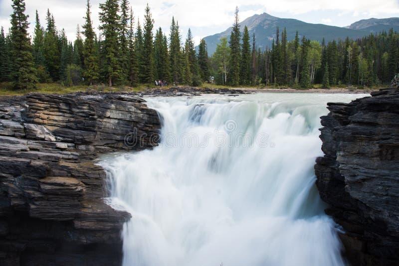 Athabasca понижается в национальный парк яшмы - Альберту, Канаду стоковое фото