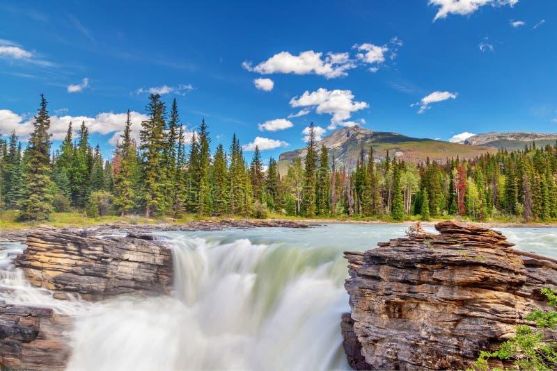 Athabasca понижается в национальный парк яшмы, Альберту, Канаду стоковая фотография