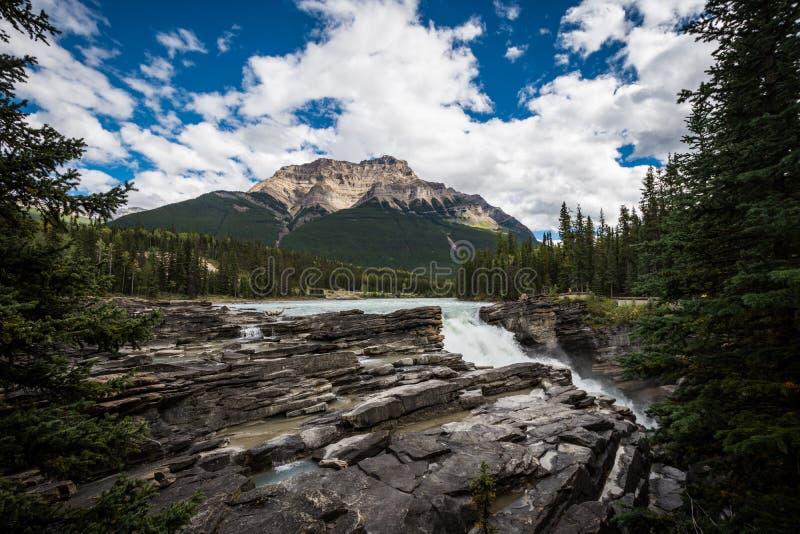 Athabasca baja en las montañas rocosas canadienses a lo largo de la ruta verde escénica de Icefields, entre el parque nacional de fotos de archivo libres de regalías