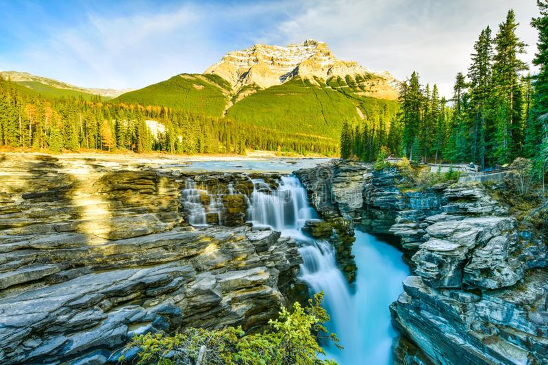 Athabasca cade in autunno, Jasper National Park, Canada fotografia stock libera da diritti
