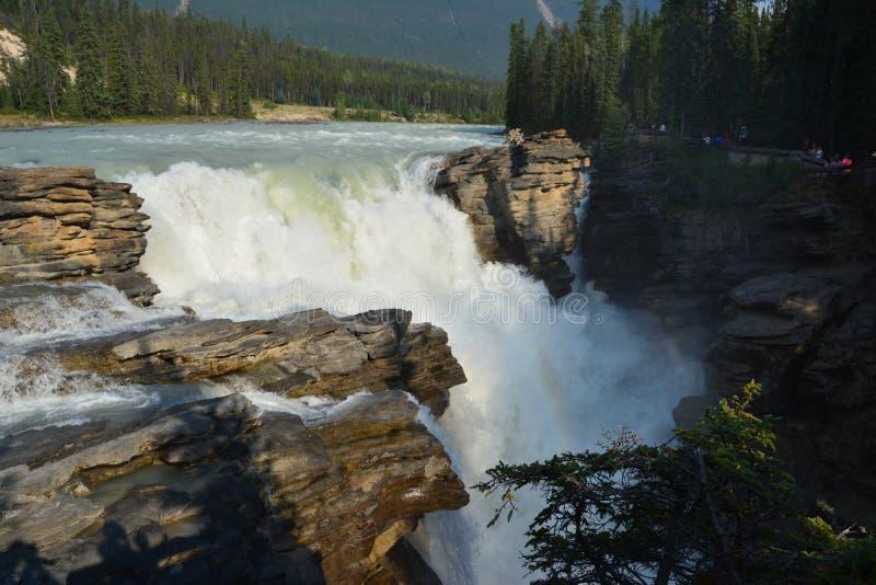 Athabasca cade il Canada immagini stock