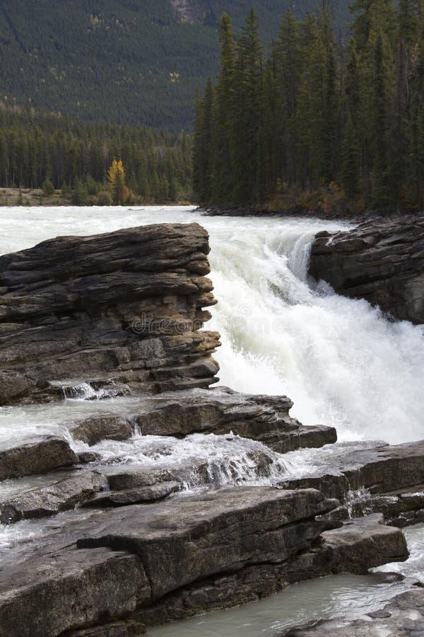 Athabasca cade impulsi in Jasper National Park in Alberta fotografie stock