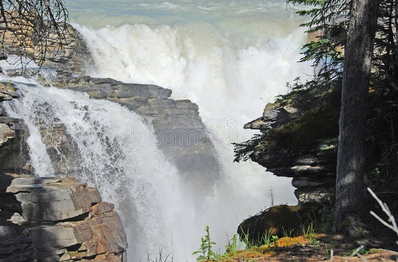 Athabasca Fall stock images