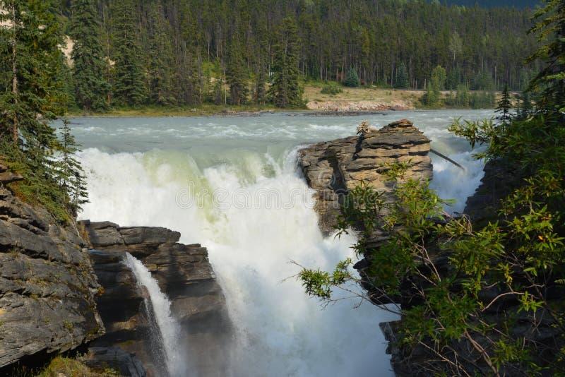 Athabasca Falls Canada. Beautiful waterfall, Athabasca falls Banff national park Canada stock image