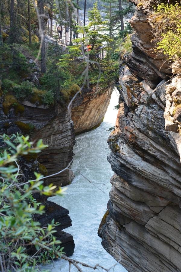 Athabasca Falls Canada royalty free stock photo