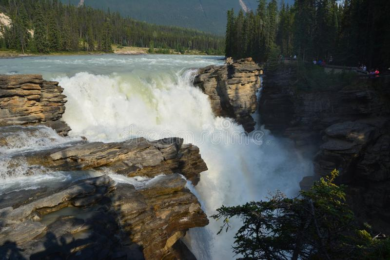Athabasca Falls Canada stock images