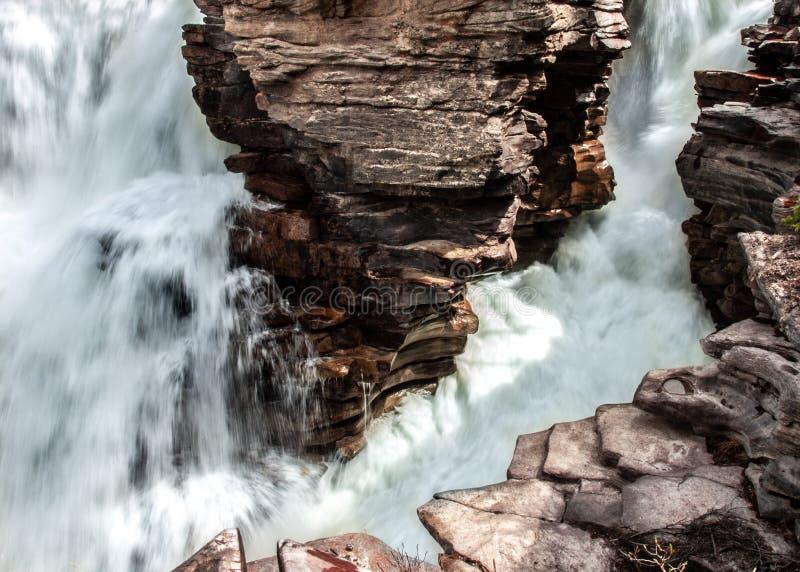 Athabasca falls royalty free stock image