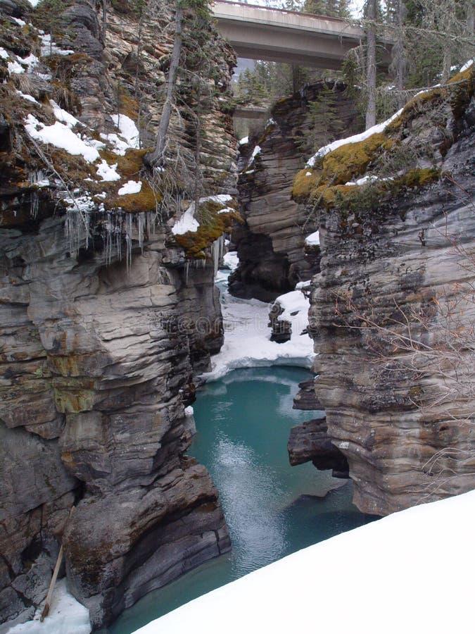 Athabasca Falls royalty free stock photo